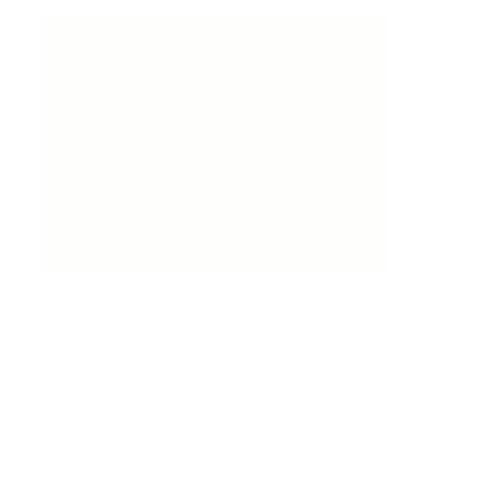 MFW-logo-whiteb